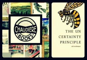 chaudiere Books indigogo2